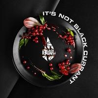 Black Burn IT'S NOT BLACK CURRANT (Красная смородина) 25 гр.