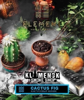 Element Water Cactus Fig