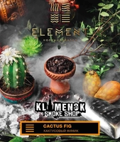 Element Earth Cactus Fig