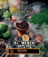 Element Earth Feijoa